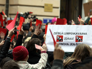 Contemporary Politics and Society in the Czech and Slovak Republics